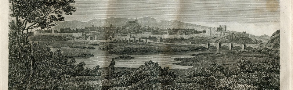 View of the City of Carlisle, Hutchinson's Cumberland, 1794