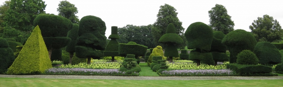 Topiary, Levens Hall.  Gardens first planted in the 1690s