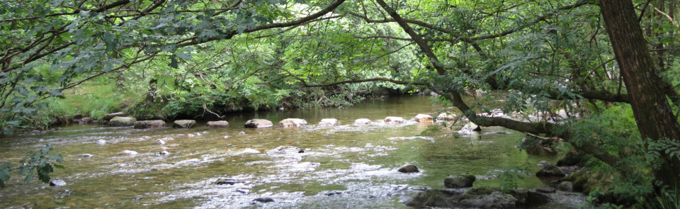 Wordsworth's stepping stones, River Duddon